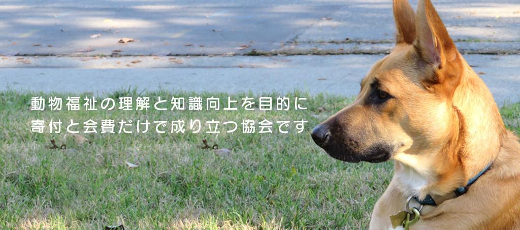 動物福祉の理解と知識向上を目的に寄付と会費だけで成り立つ協会です